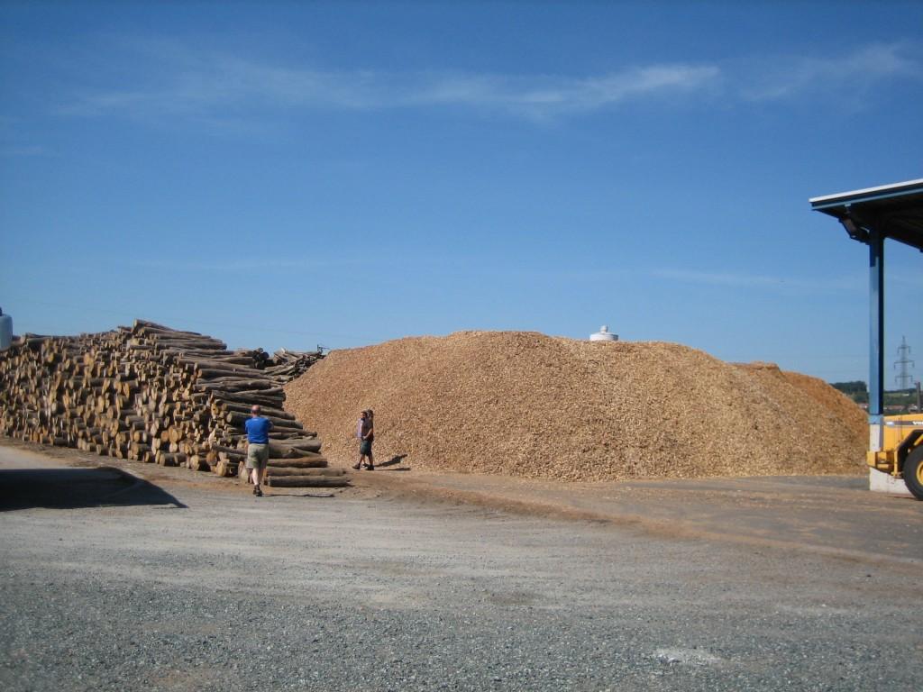 Almacenamiento de biomasa