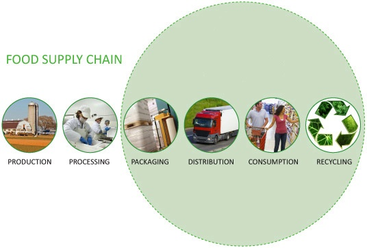 food_supply_chain
