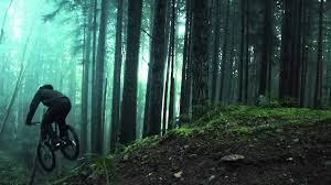 forest_bike