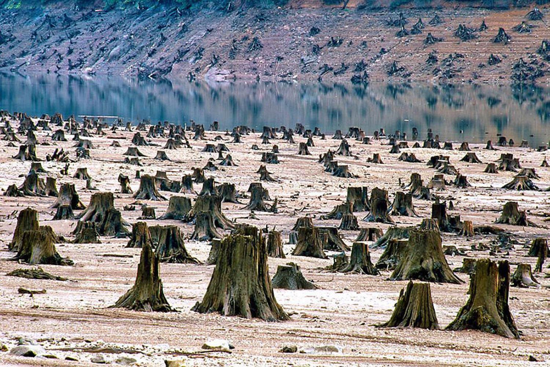 COP21_103
